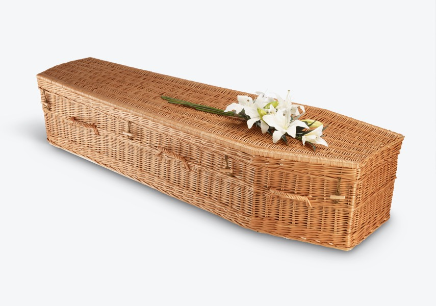 The Highsted Willow A coffin