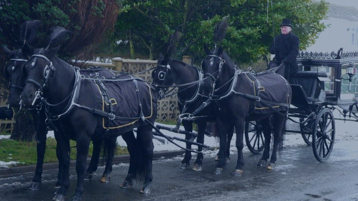 Horse-drawn hearse.